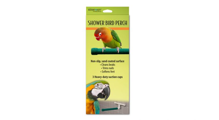 Bird-Perch-fixed-final_1000-wide.jpg