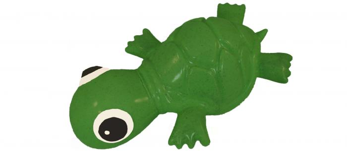CD20Turtle20Green.jpg