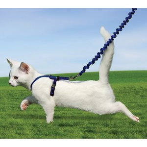 Easy20Walk20Cat20Harness.jpg