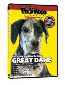 Great-Dane.jpg