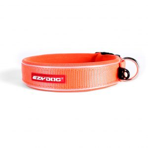 Large20Orange20Collar.jpg