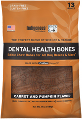 dental-health-bones-pumpkin.jpg