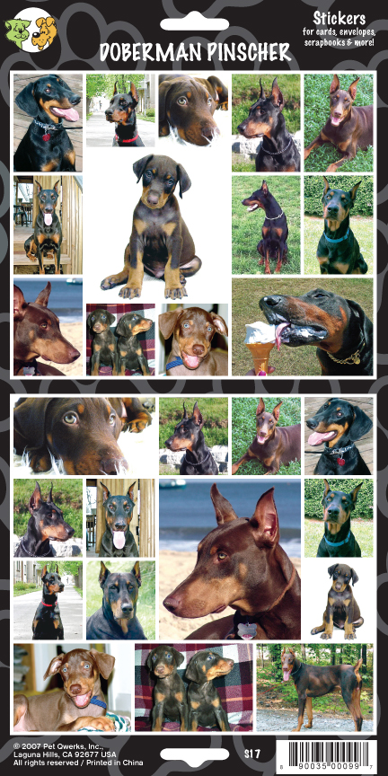 dobermanTemplate.indd