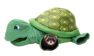 turtle20tunnel.png