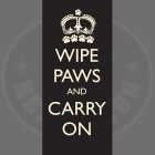 wipe20paws20and20carry20on20244324668.jpg