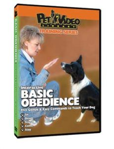 Basic-Obedience.jpg