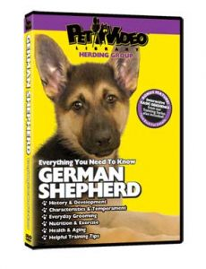 German-Shepherd.jpg