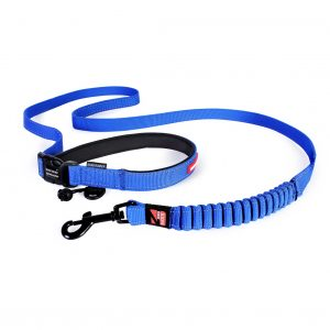 Road_Runner_Leash_Blue_lowres__00406.1405339323.1280.1280.jpg