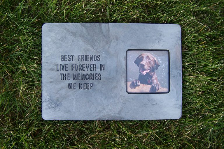 best20friends20live20forever-large20dog.jpg