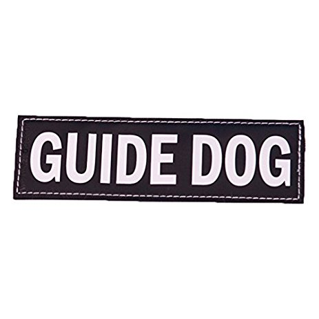 ezydog patch guide dog