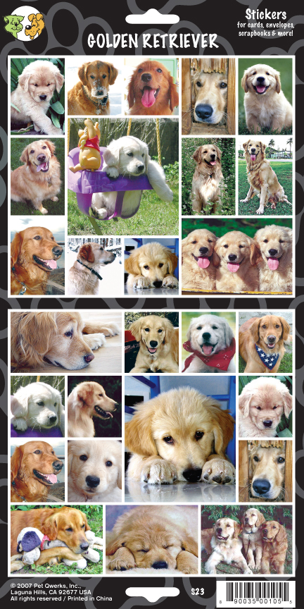 goldenretrieverTemplate.indd