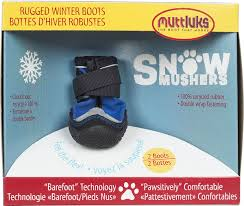 snow20musher20blue.jpg
