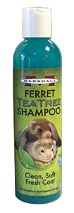 tea20tree20shampoo.png