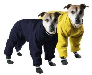 Muttluks yellow snowsuit